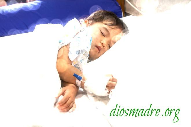 corazon de madre-diosmadre.org