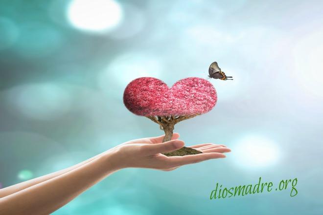 buscar el amor verdadero -diosmadre.org