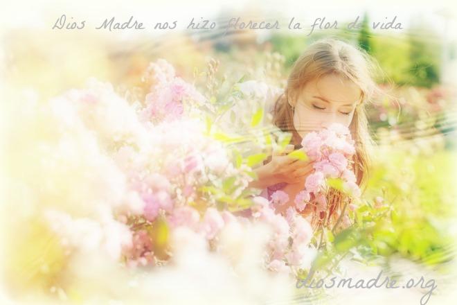 for de vida de la Madre celestial-diosmadre.org